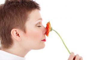 bau bunga