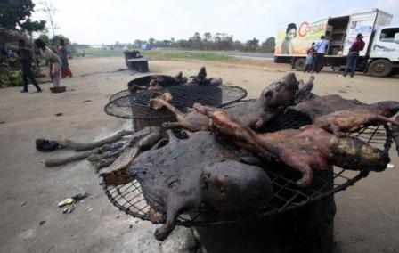 Daging atau karkas hewan liar