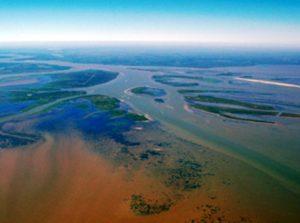 Delta Sungai Atchafalaya