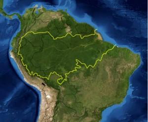 Peta hutan hujan Amazon. (Photo: NASA)