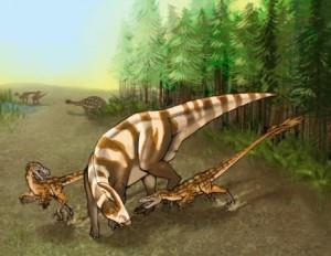 Saurornitholestes sullivani, velociraptor