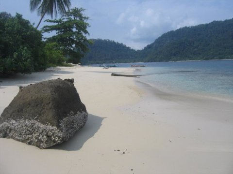 ekosistem laut tropis