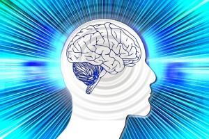 otak, kecerdasan