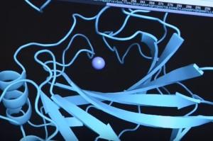 bakteri, laut dalam, gas rumah kaca