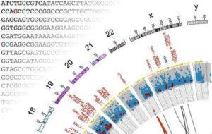 mutasi, bioinformatika, kanker kandung kemih