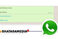 Cara Membuat Chat WhatsApp Jadi Baca Selengkapnya