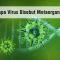 Kenapa Virus Disebut Metaorganisme