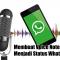 Membuat Voice Note Menjadi Status Whatsapp